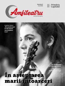 Nr. 9 Revista Amfiteatru