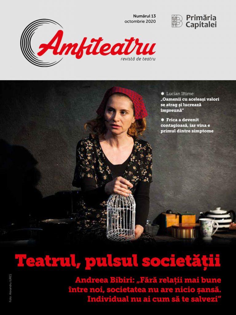 Nr. 13 Revista Amfiteatru